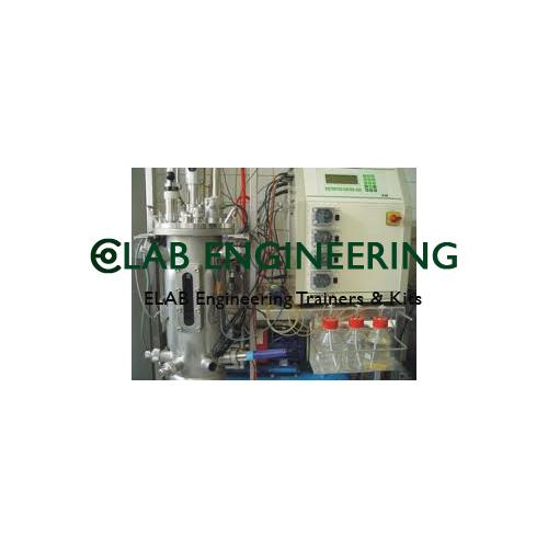 Enzymatic Reactors