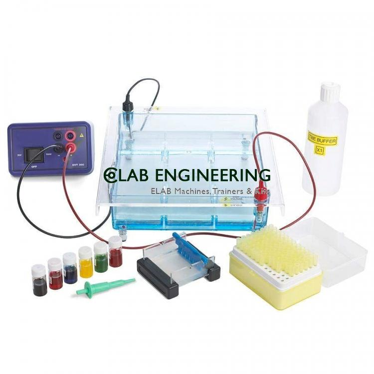 Gel caster for submarine electrophoresis